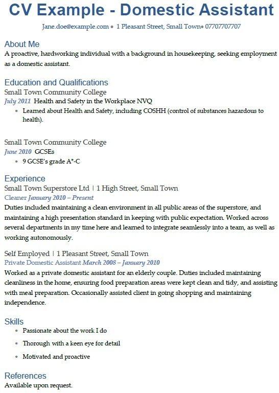 Domestic Assistant CV Example Uk