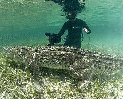 Yucatan Drive Trek, Chetumal, Quintana Roo, Mexico