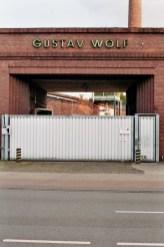 Gustav Wolf 1
