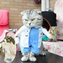 Baju Kostum Kucing Lucu Anjing Hewan Doctor Dokter Medis Unik