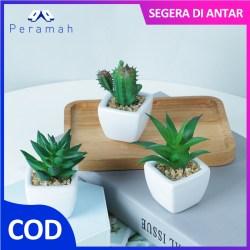 ã€COD】Peramah Baru Bunga Hiasan Kaktus Hias Dengan Pot Plastik Meredakan Stres Pot Bunga Hias Tanaman Sukulen