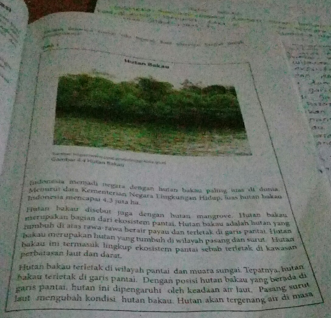 14 Contoh Paragraf Deduktif Induktif Campuran Dan Naratif