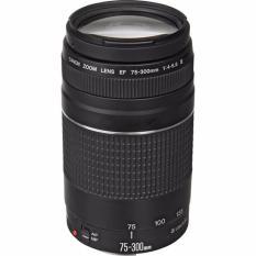 Lensa Canon EF 75-300mm F/4-5.6 III