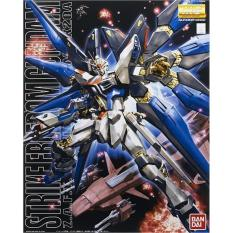 Mg 1/100 Strike Freedom Gundam - Z6g7qr