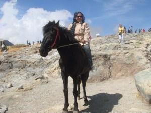 Berkeliling Dngan Kuda