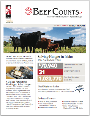 Beef Counting Impact Report