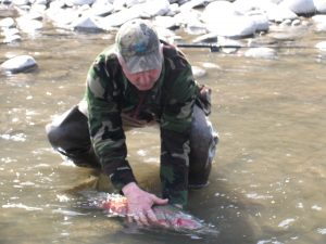 Chasing Steelhead, Idaho Senior Independent