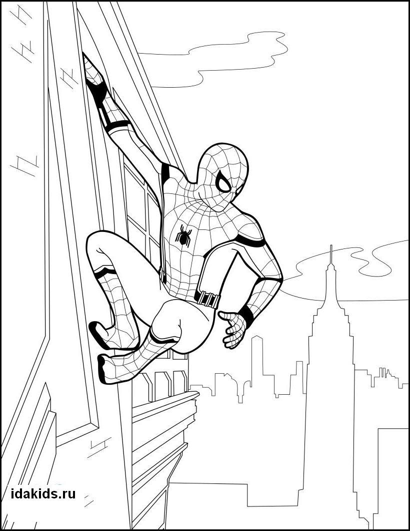 раскраска человек паук распечатать бесплатно топ 30 картинок