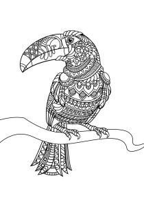 Birds - Free printable Coloring pages for kids6