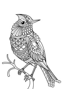 Birds - Free printable Coloring pages for kids10