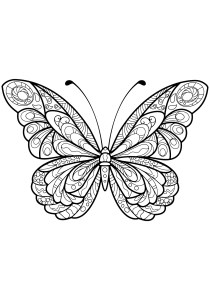 Butterflies - Free printable Coloring pages for kids6