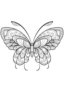Butterflies - Free printable Coloring pages for kids12