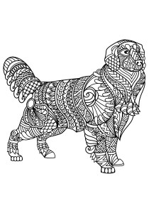 Dogs - Free printable Coloring pages for kids7