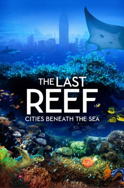 Последний риф 2012