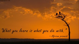 emilysquotes-com-learning-knowledge-death-african-proverb-wisdom