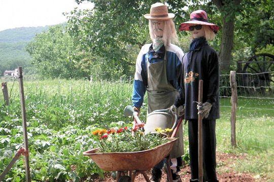 couple jardin