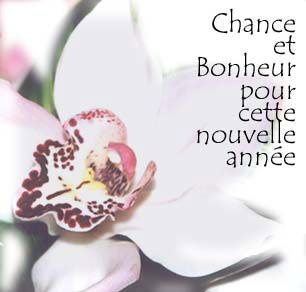bonne-annee4
