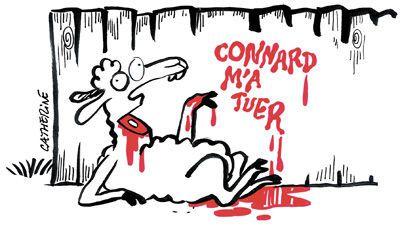 """Résultat de recherche d'images pour """"aïd el adha humour"""""""