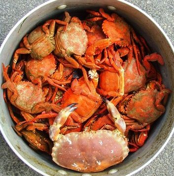 crabes-cuits--1-.jpg