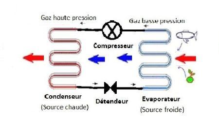Physique Mohammedberrada