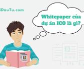 Whitepaper của dự án ICO là gì?
