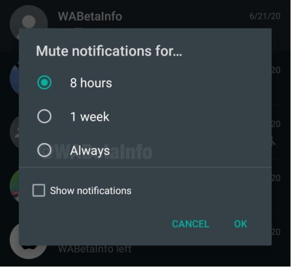 Fitur Mute WhatsApp Selamanya