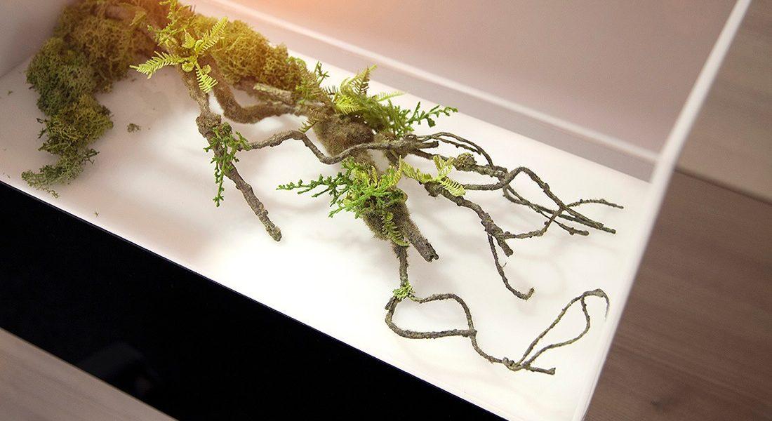 Freiseureinrichtung Deko Pflanze