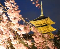 仏教と神道