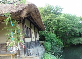 古い造りの家の七夕飾り