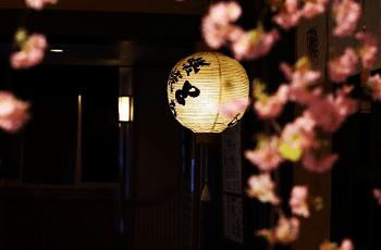 提灯と桃の花