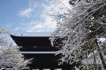 木の枝に積もる雪と山門