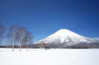 冬の山の風景