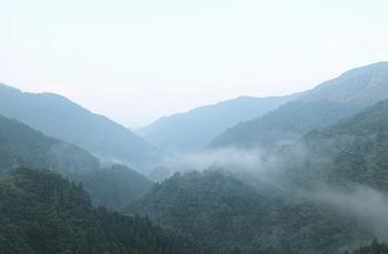 春の山の風景