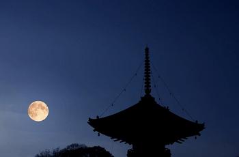 月と影の寺院