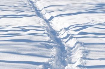 雪踏みのある道
