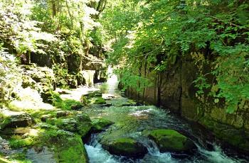 強い日射しの中の渓流