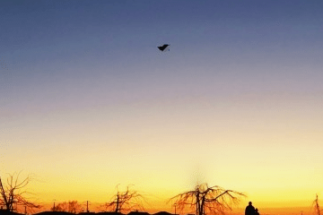 夕方に揚がっている凧