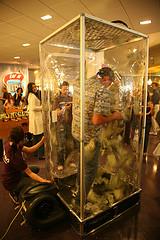 Inside the money machine