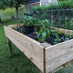 40 Stunning Vegetable Garden Design Ideas Perfect For Beginners (21)