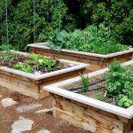 40 Stunning Vegetable Garden Design Ideas Perfect For Beginners (28)