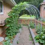 40 Stunning Vegetable Garden Design Ideas Perfect For Beginners (32)
