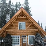66 Best Small Log Cabin Homes (23)