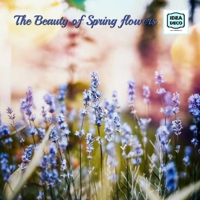The Beauty of Spring Flowers by Areti Vassou Ideadeco