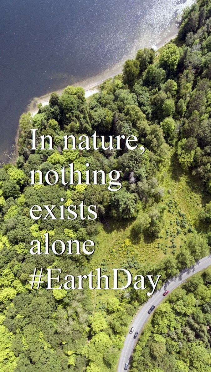 In nature, nothing exists alone #EarthDay