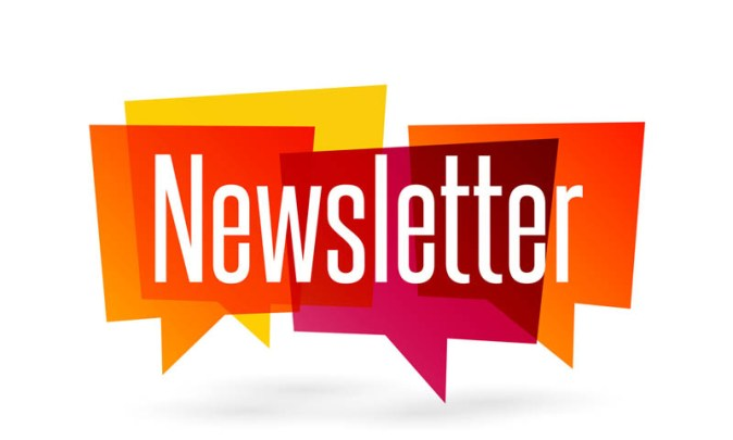 Have you seen our latest Newsletter?