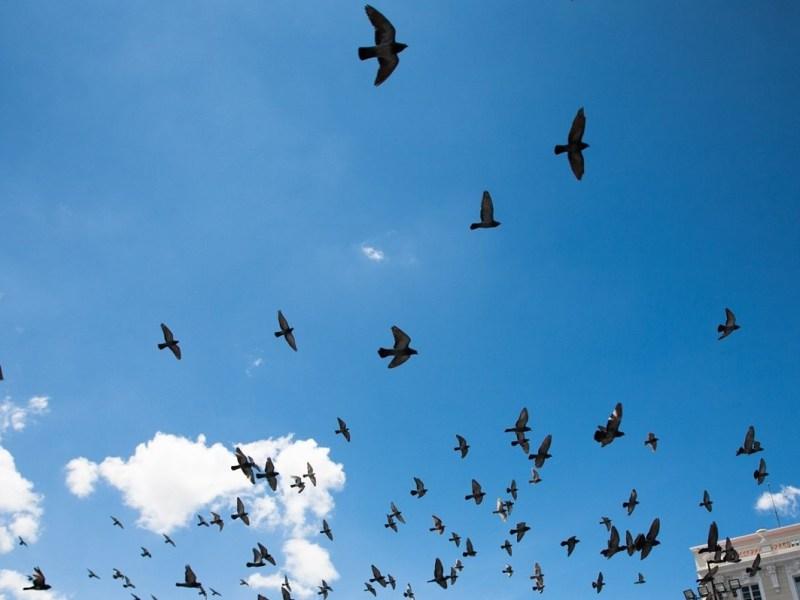 7 Ways to Develop your Communication Skills by Areti Vassou