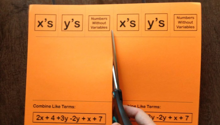 Quick Guide: Combining Like Terms Foldable