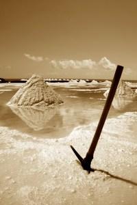 Fossil River. Kuva: Culinaristit.com.
