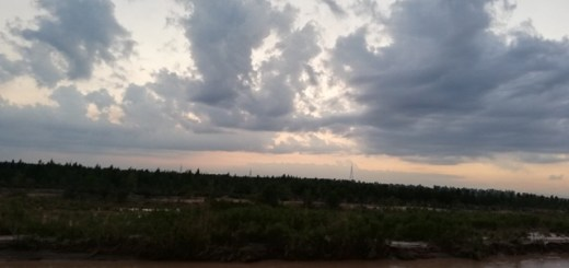 clouds in a sunset