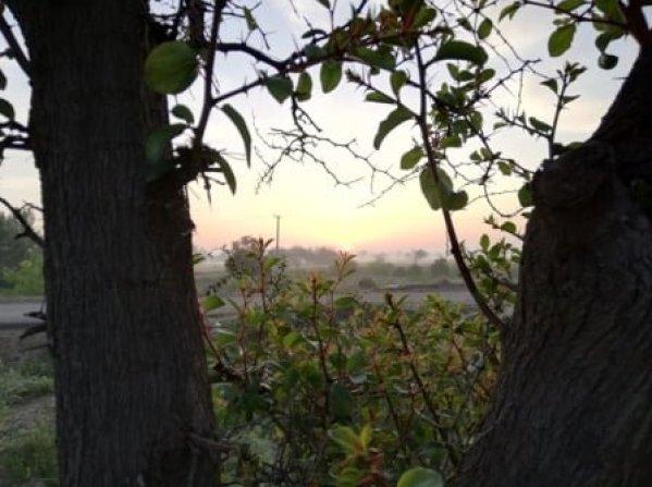 Sunrise photos